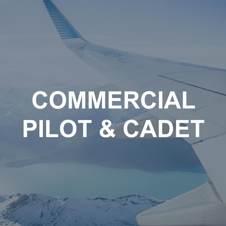 Aviation Aptitude Test Practice (Brisbane Only) – Pinstripe
